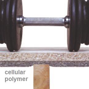 cellular Polymer